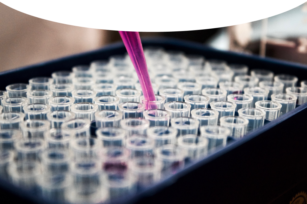Die Eisai GesmbH onkologie